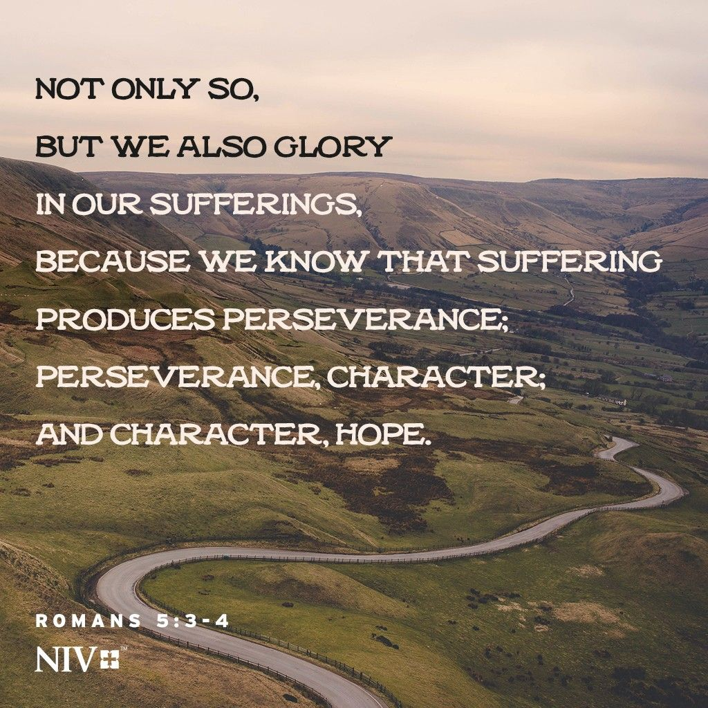 NIV Verse of the Day: Romans 5:3-4 | Romans 5 3 4, Romans 5, Esv journaling bible