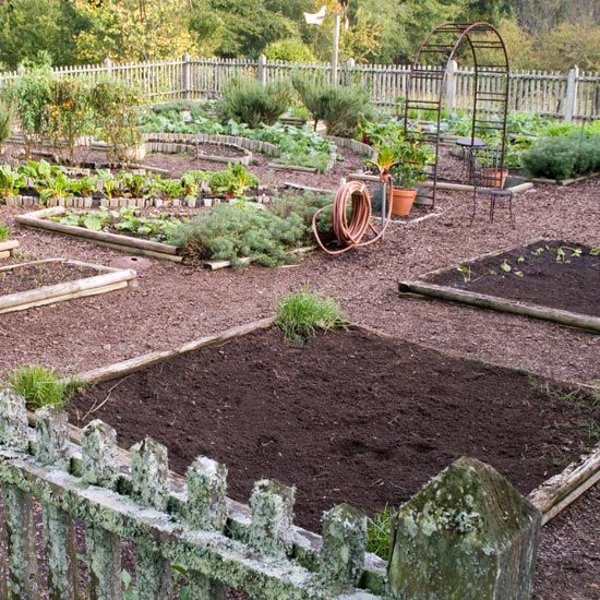 Space Time Continuous - The One-Acre Farm Blog - GRIT ...