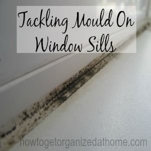 The Best Ways For Tackling Mold On Window Sills Cleaning