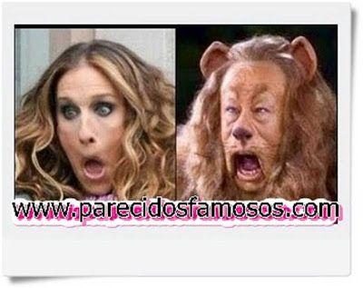 Parecidos con famosos: Sarah Jessica Parker con León Cobarde