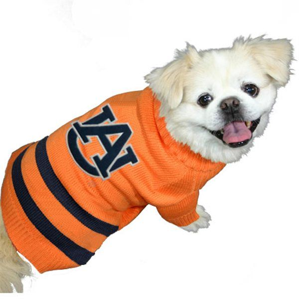 online store ce496 08fb9 Auburn Tigers dog sweater. #NCAA #CollegeFootball For Great ...