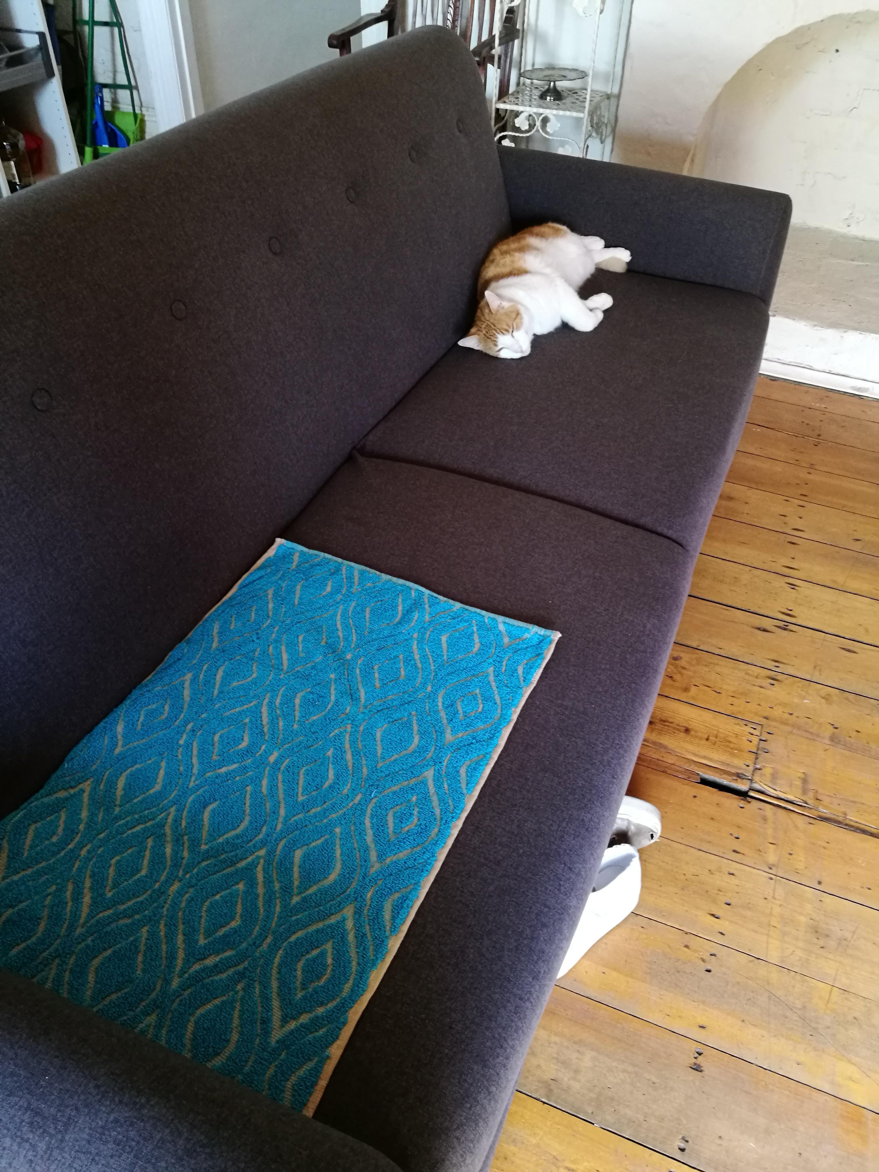 Put him to sofa