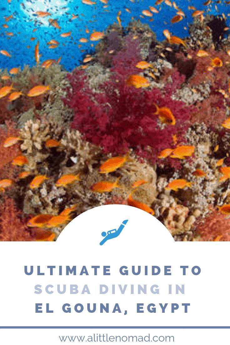 El Gouna Diving Guide For Scuba Fans Hurghada Snorkeling Scuba