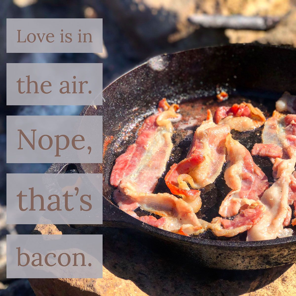 Love is in the air. Nope, that's bacon. Best food