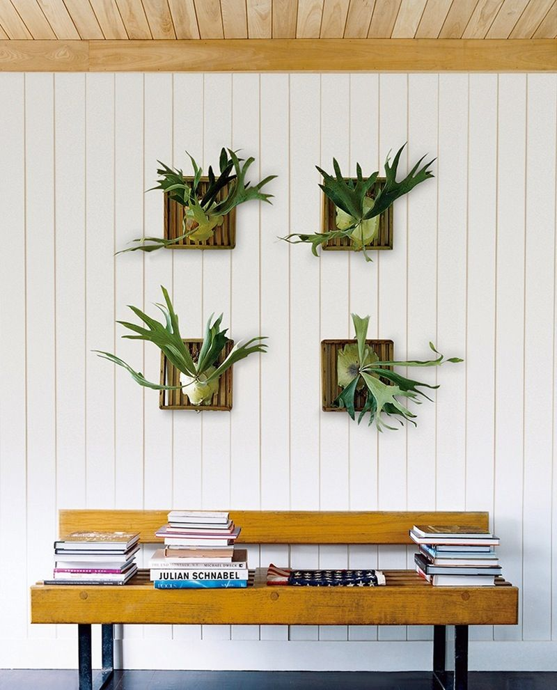 Best Ways To Redecorate With Green: 13 Unexpected Ways To Decorate With Plants