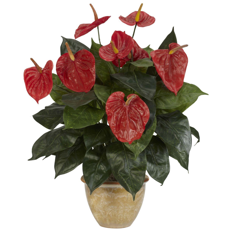 Anthurium W Ceramic Vase Silk Plant Anthurium Plant Silk Plants Anthurium