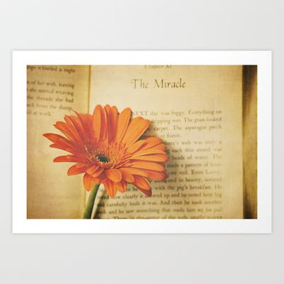 The Miracle Art Print by Sandra Arduini - $18.00