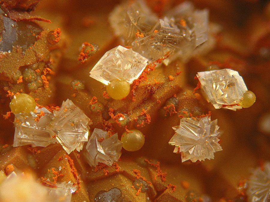 Leucophosphite, KFe+++2(PO4)2(OH)•2(H2O), with Cyrilovite, Puech de Leguo, La Capelle-Bleys, Aveyron, Midi-Pyrénées, France. Fov 2 mm. Photo Jean-Marc Johannet
