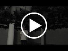 Vidéo de l'exposition