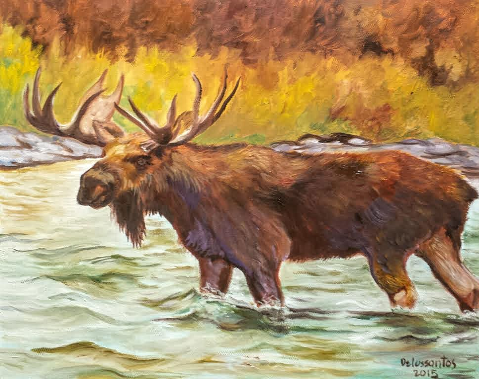 While not specifically the national animal of Canada, the moose is one of Canada's most cherished and recognizable national icons. The moose reaches its highest population density on the island of Newfoundland, even though it is not native to the island. The moose was introduced to Newfoundland by humans in the early 1900s. Despite the large number of moose in Newfoundland, the caribou beat it out as the official animal of the province.  #newfoundland #moose #krizzart #mooseart #artforsale