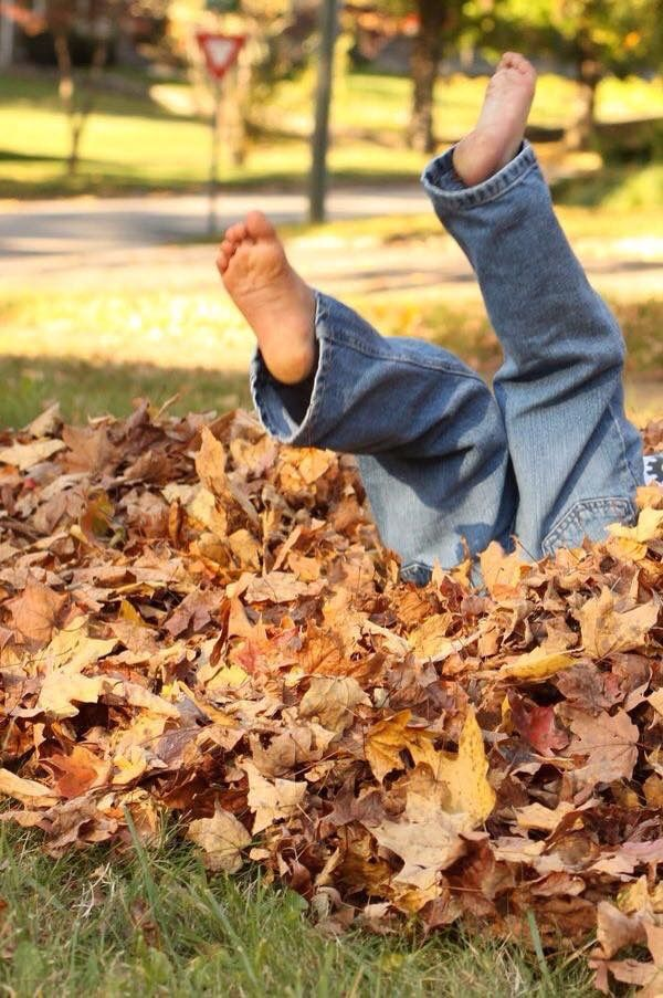 jumping into piles of leaves