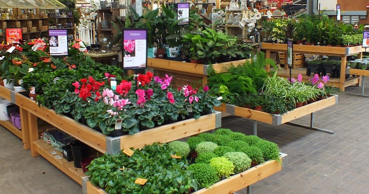 Garden Centres And Nurseries Near Me Nursery Near Me Garden