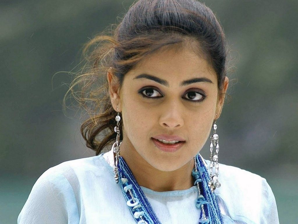 Genelia D Souza Wallpapers 30 Hd Pics: Genelia D Souza Wallpapers Bollywood Actresses Images