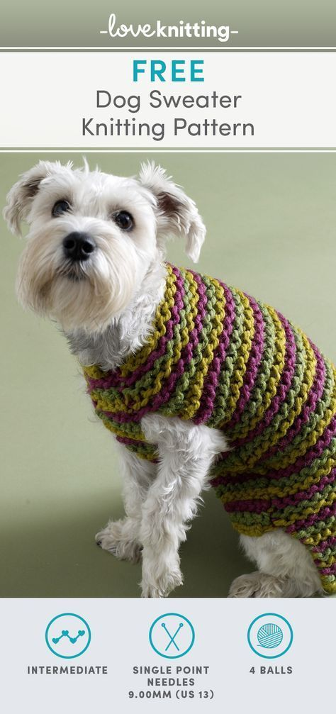 Photo of New Knitting Patterns Dog Sweater Lion Brand Ideas | knitting patterns for begin…