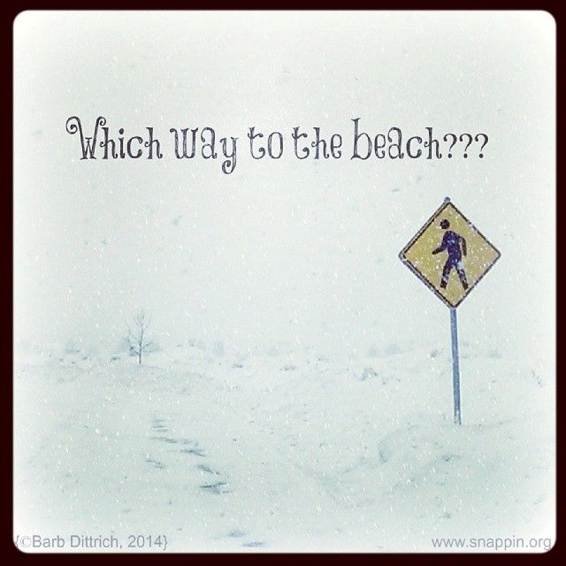 Sick Of The Winter Weather Yet Sillysaturday Cold Weather Quotes Cold Weather Funny Snow Quotes Funny