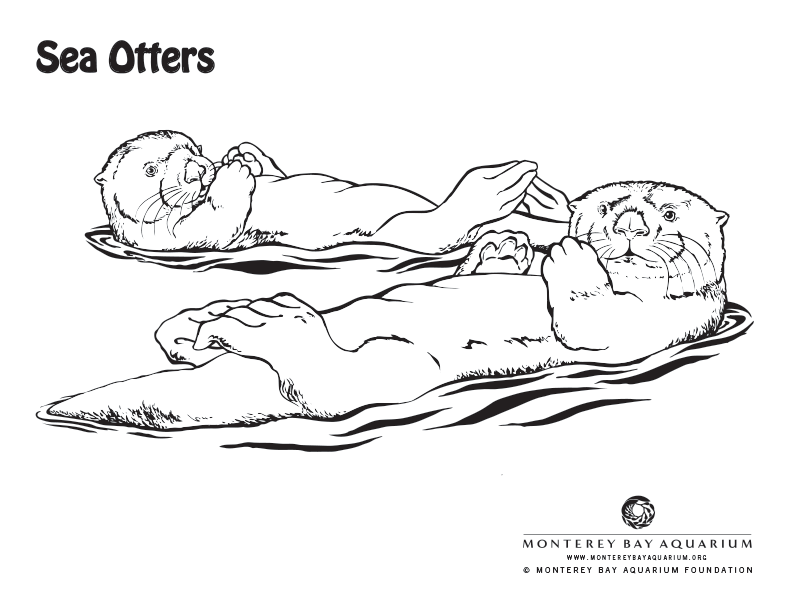 Coloring Pages Of Aquatic Animals : Otter coloring pages: pages online