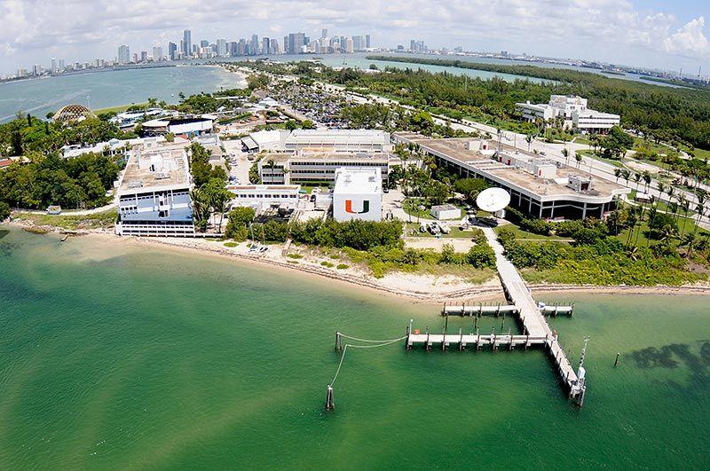 University Of Miami Coral Gables Fl Campus Map University Of Miami Miami