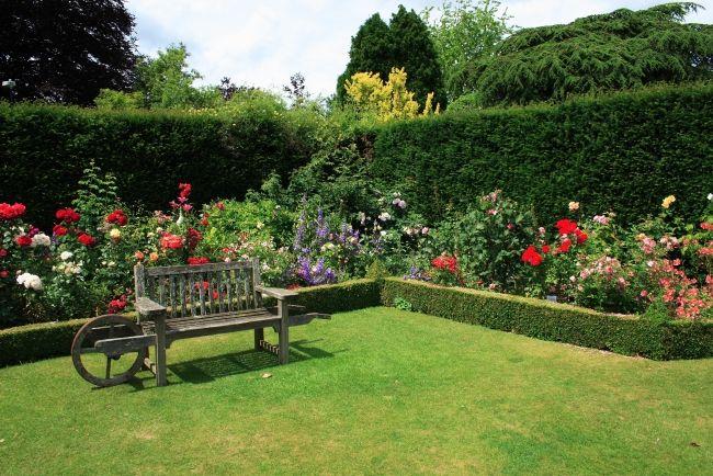 Gartengestaltung Sichtschutz Hohe Buchsbaumhecken Holzkarre Bank | Garten |  Pinterest