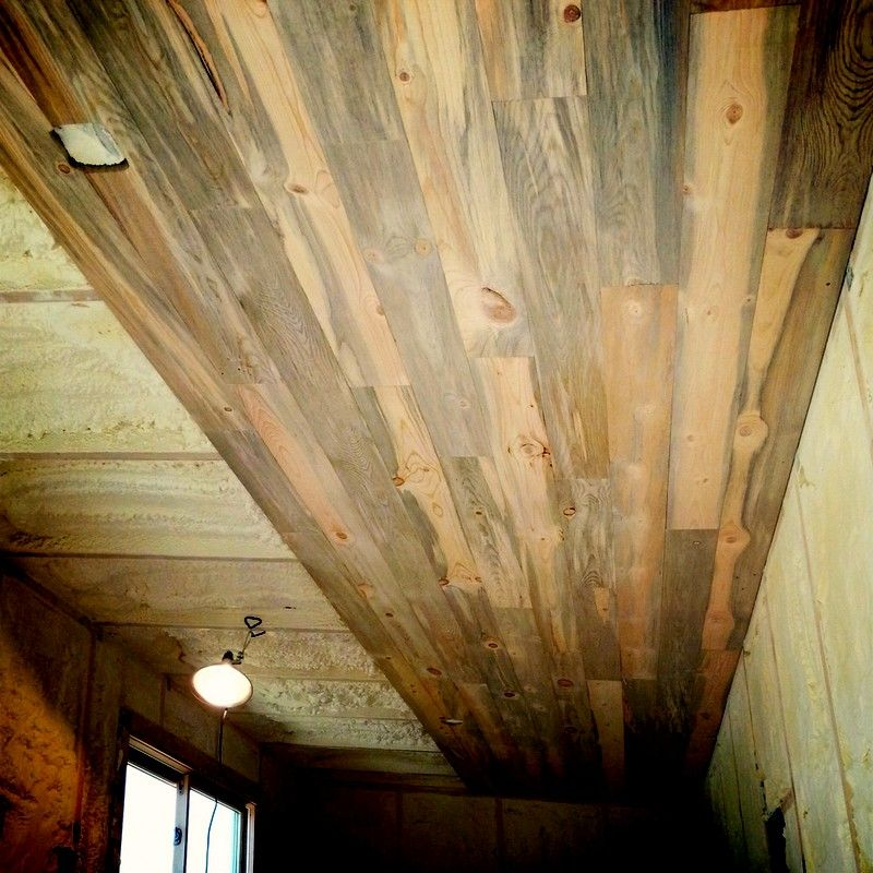 Accent Wall With Blue Stain Pine: Beetle Kill Pine Lumber For Walls & Floors In 2019