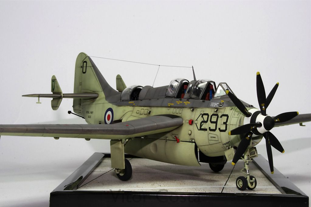 Plastic Pics - HyperScales Picture Posting Forum:   Model
