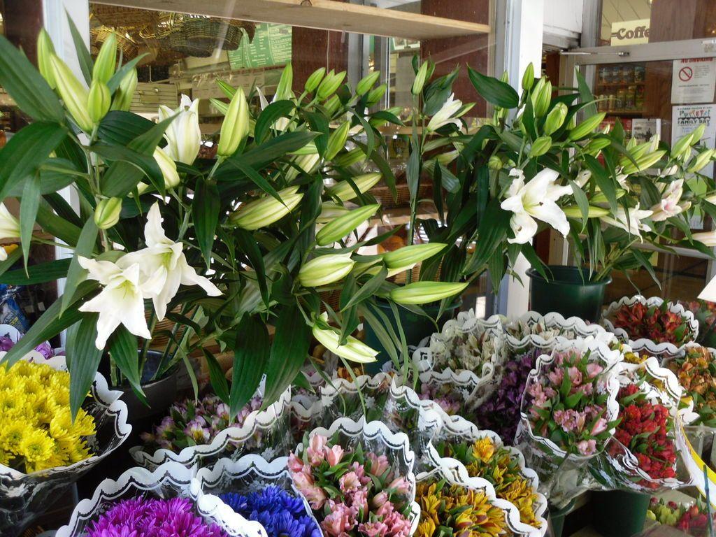 Flower Shop In Katonah New York Jigsaw Puzzle In Flowers Puzzles On Thejigsawpuzzles Com Flower Shop Flowers Jigsaw Puzzles