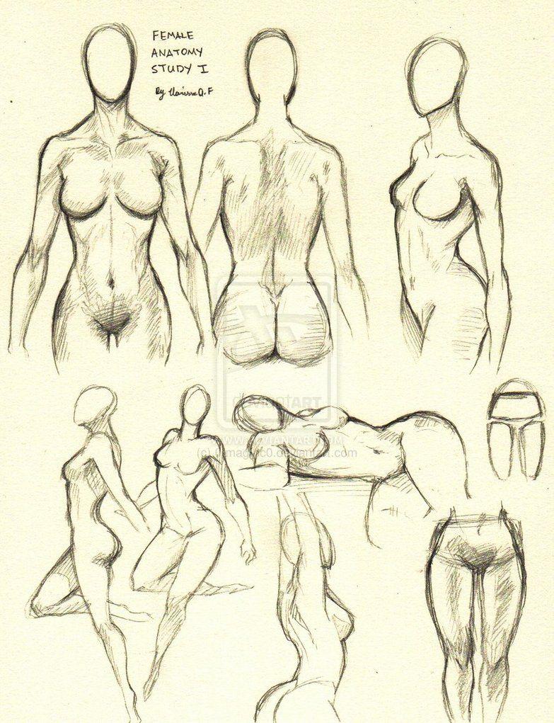 Female Anatomy Study 1 By 0imaginc0 On Deviantart Httpwww