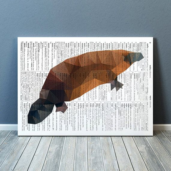 platypus poster animal print wall decor for your home and office geometric art