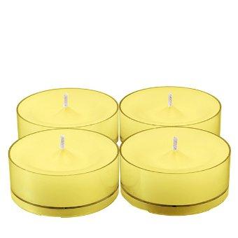 Glolite By Partylite Wild Lemongrass Citronella Large Tealight Candlesitem V09811 Take Our Beloved Glolite In 2020 Wild Lemongrass Tea Lights Party Lite Candles