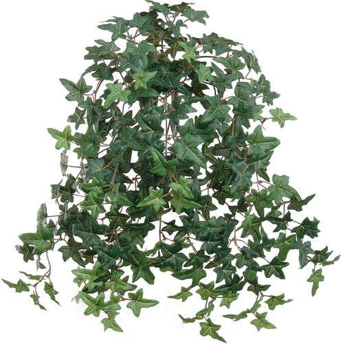 "20  Hanging Mini English Ivy Faux Plant is part of Ivy Plant decor - This beautifully lifelike 20"" mini english ivy bush with 274 leaves hangs down like it would from a natural plant  Each wired vine allows you to shape it to your preference and is ideal for decoration in any corner of your home and office  The lovely and lush hanging plant is perfect for weddings, parties, table pieces and much more  It can be used as home décor, lifestyle décor, and kitchen, porch or bath"