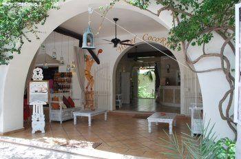Nuovo EXPLORACafé Coco Rio un boutique hotel a gestione italiana, una piccola struttura di stile coloniale situata a pochi passi dalla 5ª Avenida Playa Del Carmen in Messico - See more at: http://blog.presstours.it/2014/11/13/nuovo-exploracafe-coco-rio-playa-del-carmen-mexico/#sthash.0Ii7hipN.dpuf