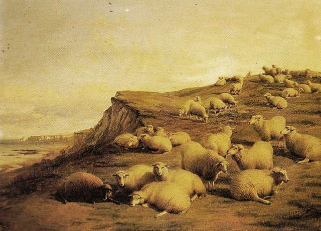 It's About Time: A few more sheep to end the day...