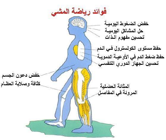 المشي يهدىء الأعصاب في المشي تكمن قوة شافية هذه الرتابة في تحريك قدم بعد الأخرى بإيقاع متزن مع التلويح بالذراعين عل Health Medical Information Health Healthy