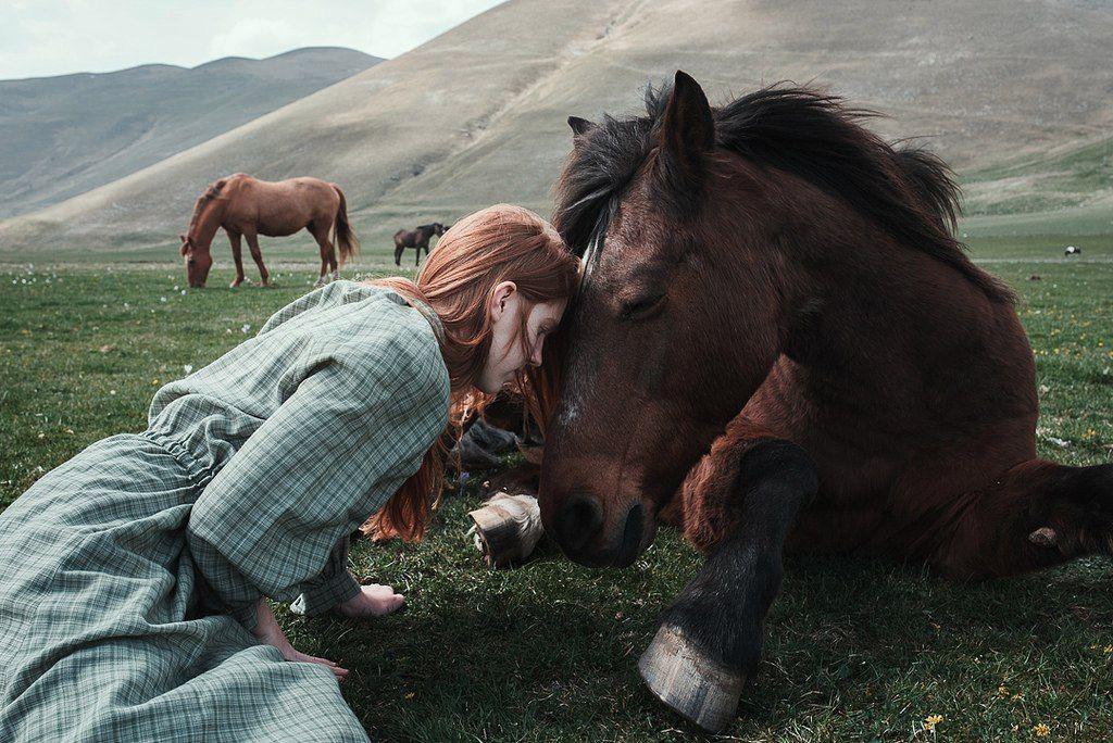 Картинки людей и лошадей