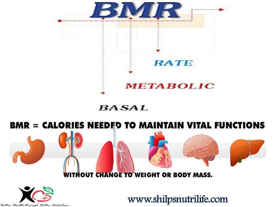 Basal Metabolic rate | Shilpsnutrilife