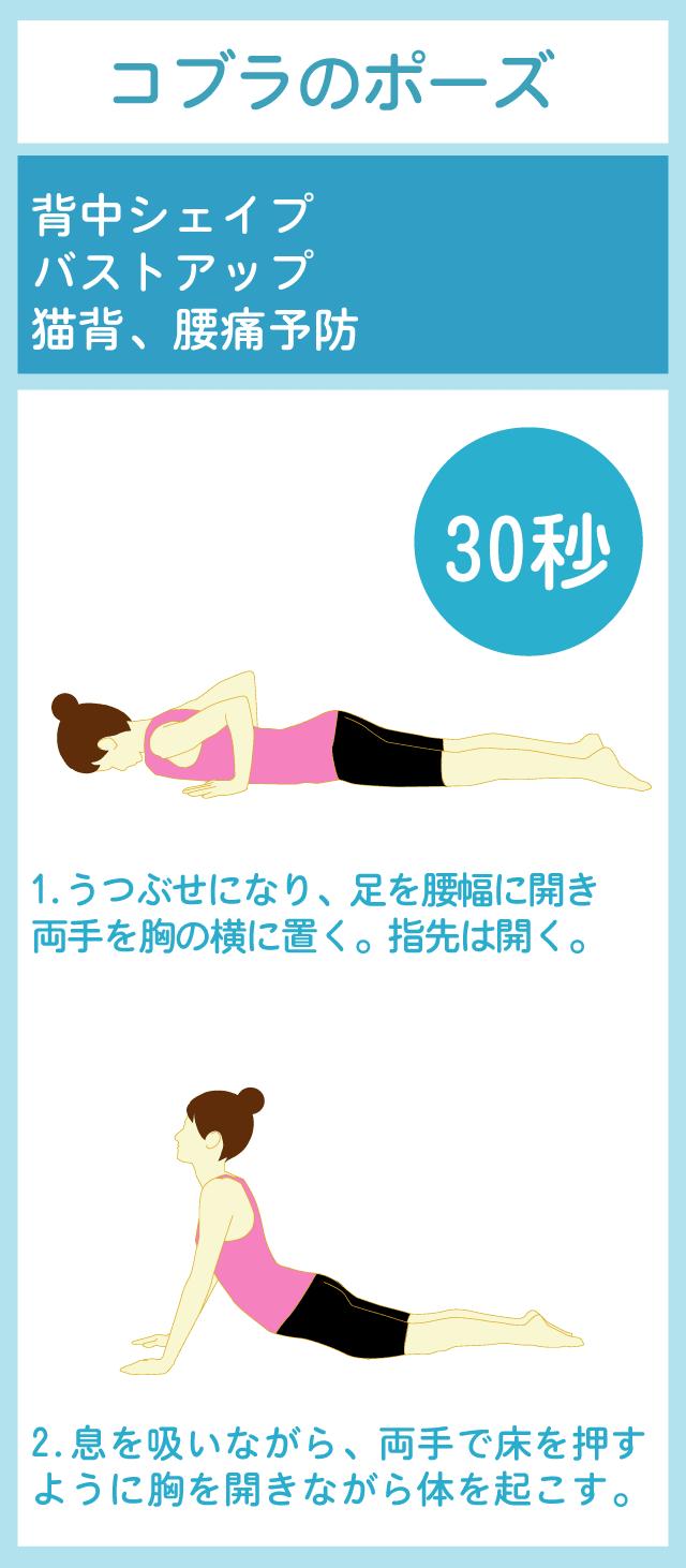 中 ダイエット 生理