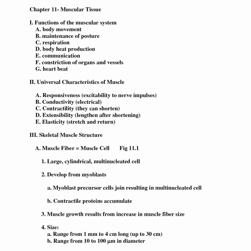 Passive Transport Coloring Key Lovely Coloring Pages Anatomy And Physiology Coloring Workbook In 2020 Anatomy And Physiology Anatomy Flashcards Passive Transport