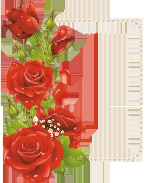 اطارات الورود 2018 سكرابز ورود للتصميم 3dlat Com 1410958937 Rose Frame Vector Flowers Floral Cards Design