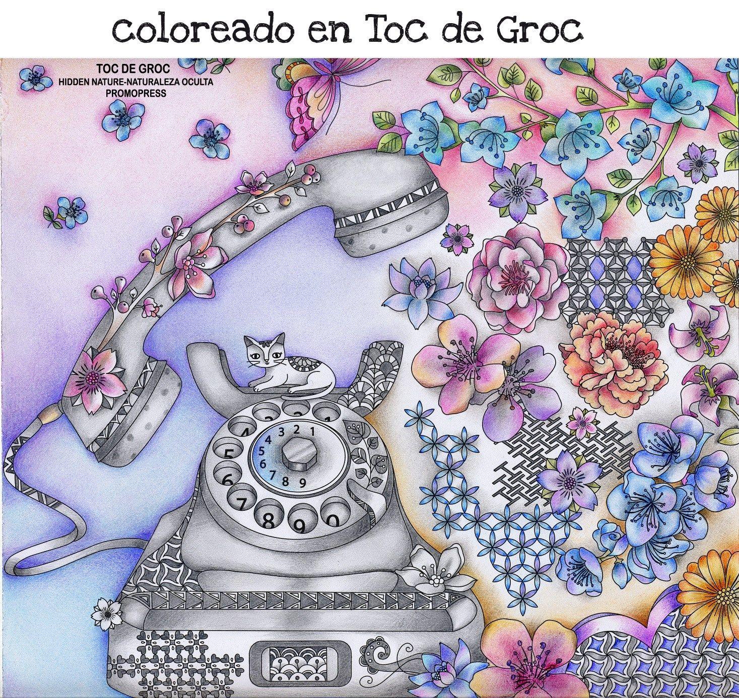 Pin de Carolyn Sasuga en Coloring-Hidden Nature   Pinterest ...
