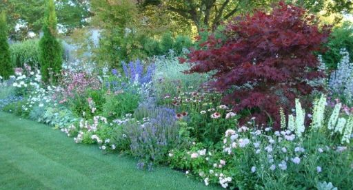 Pin by Sewitsmade on Cottage Garden | Small native garden ...
