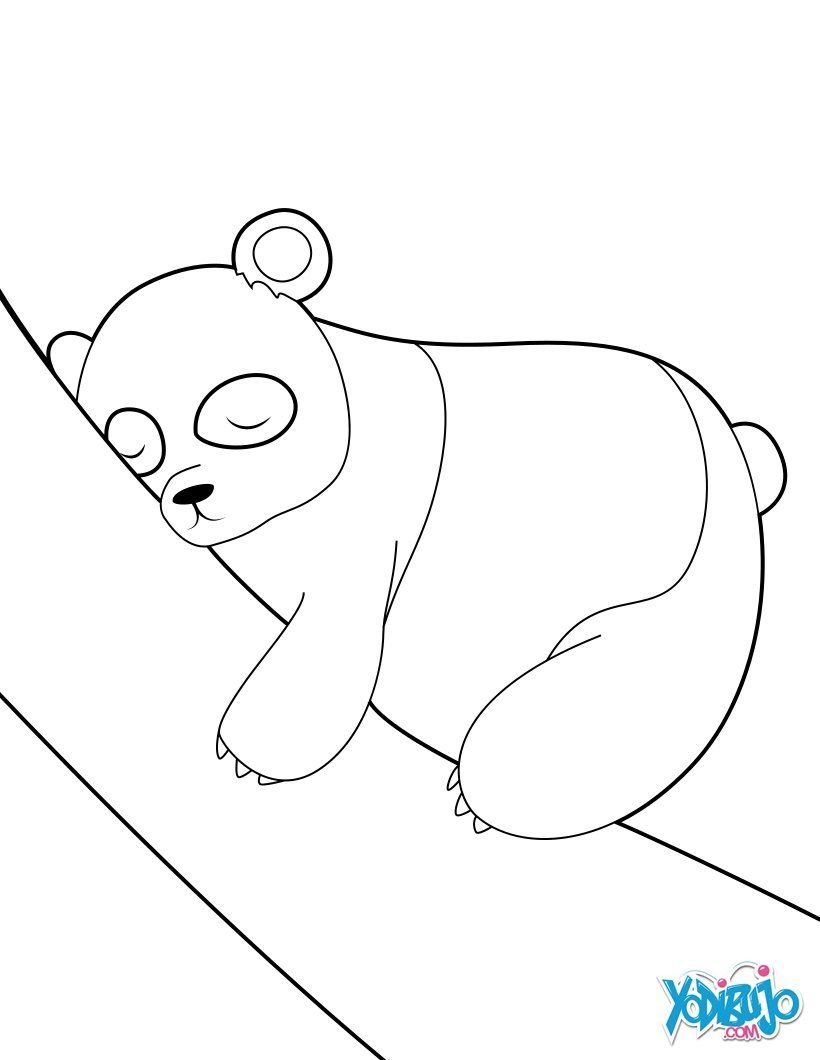 Dibujos ANIMALES SALVAJES para colorear, Oso Panda duerme para ...