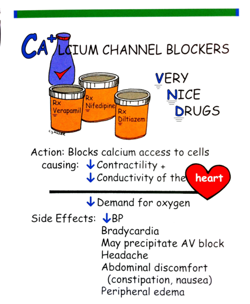 calcium channel blockers i wish there were simple diagrams like, Skeleton