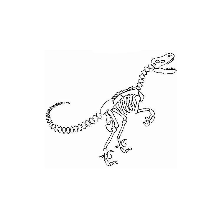 Coloriage dinosaure squelette arts dino pinterest colouring pages et tattoos - Coloriage a imprimer dinosaure ...