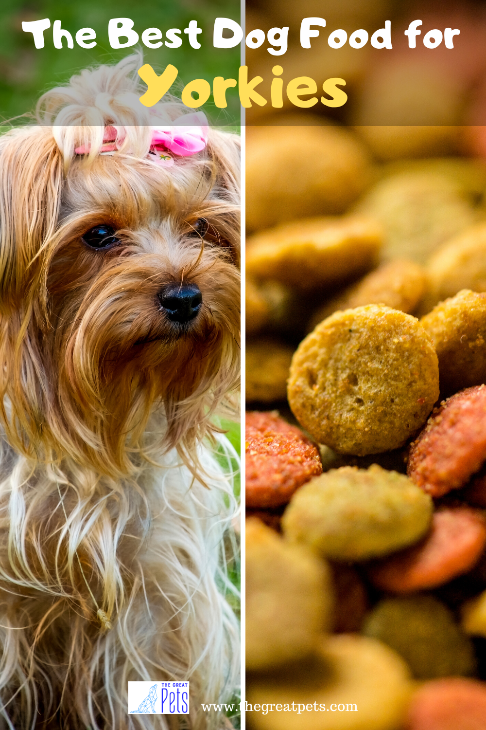 The Best Dog Food For Yorkies Review In 2020 Dog Food Recipes Best Dog Food Dog Nutrition