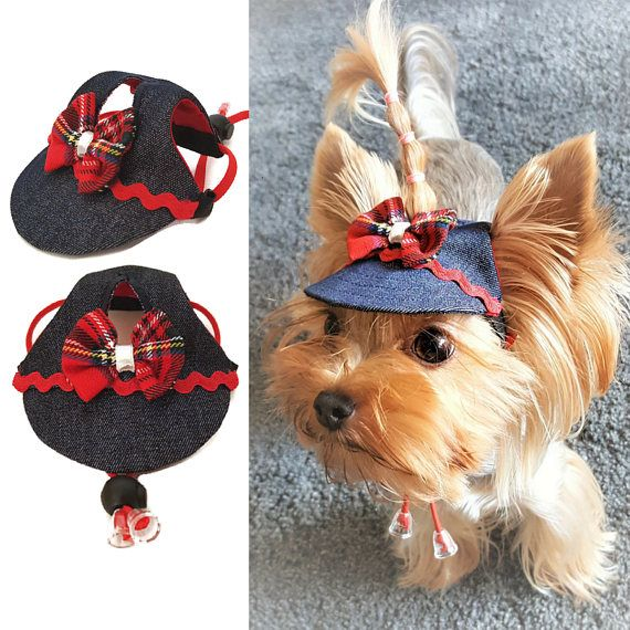 Dog outfit hat Yorkie clothes Pet hat PDF Small dog hat pattern for ...