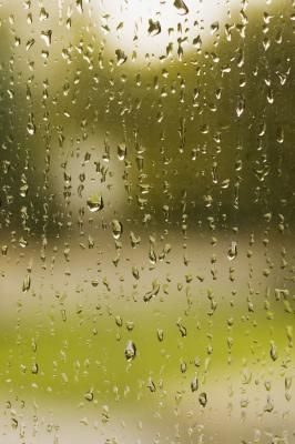 How To Remove Black Mildew From Wood Window Sills Clean