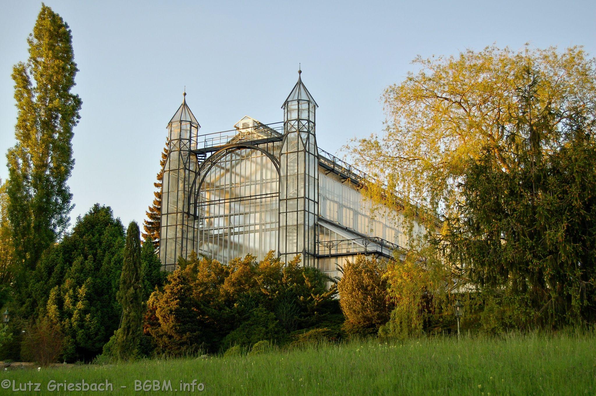 Berlin Dahlem Botanischer Garten Mittelmeerhaus Google Search House Styles Botanical Gardens Renaissance Art