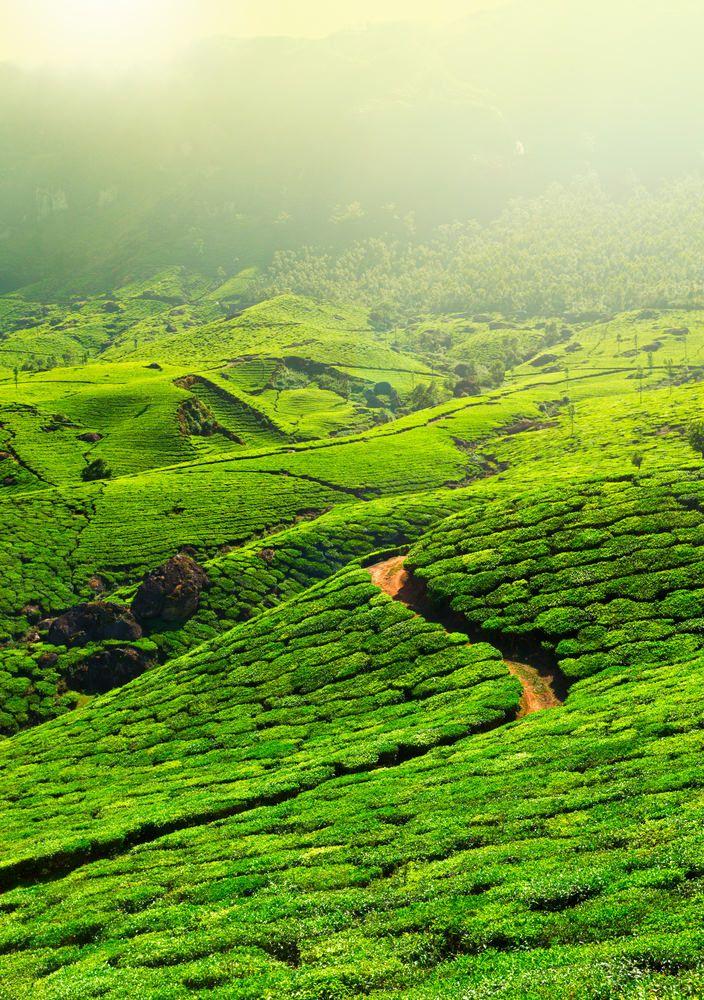 أشهر وأجمل 20 منطقة سياحية في الهند Natural Landmarks Tourism Photo