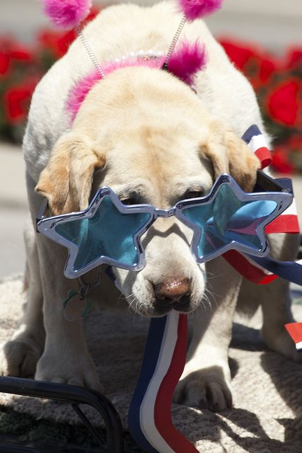 Independence Day Parade by 29k Productions, via Flickr