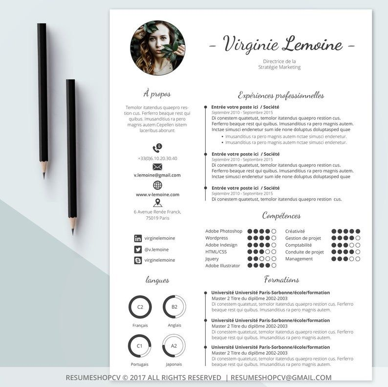 4 Cv Professional Resume Modern And Graphic 4 Letters Pack Of Extra Pictograms For Microsoft Word Brun Tanne 5 0 Cv Curriculum Vitae Curriculum Vitae Modele Lettre De Motivation