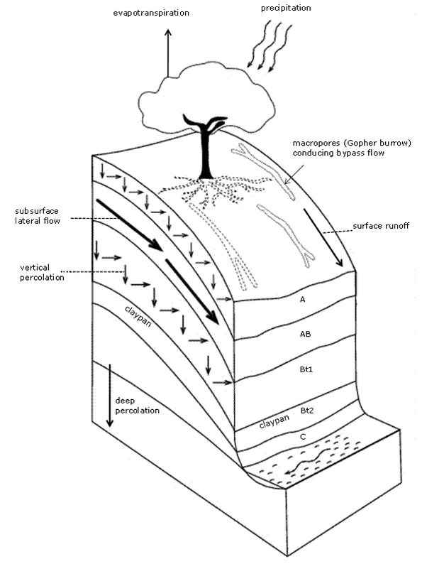 Conceptual Diagram Of A Soil Profile Illustrating The Soil Soil Texture Information Visualization